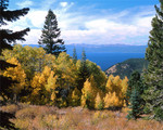 Autumn above Lake Tahoe