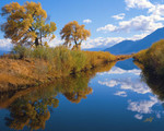 Autumn Reflections in Carson Valley