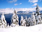 Tahoe's Winter Paradise
