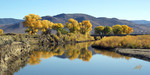Autumn Splendour at the Carson River